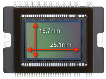 APS-C Crop Sensor DSLR