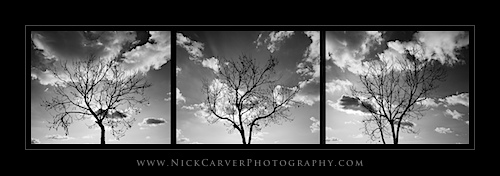 Triptych Photography
