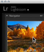 Adobe Lightroom Online Course