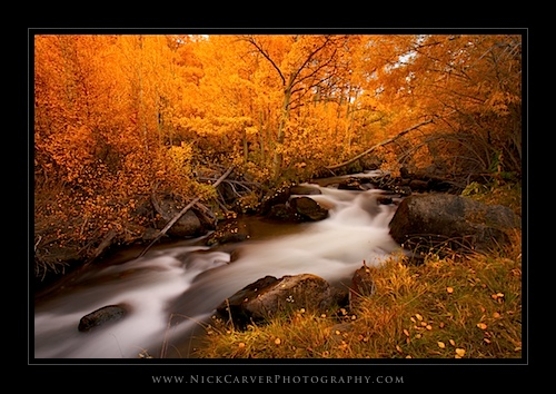 Bishop Creek in Fall - Sierra Nevada Mountains, CA