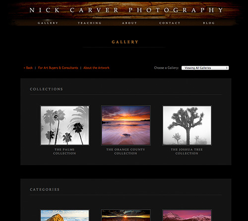 Nature Photography Gallery