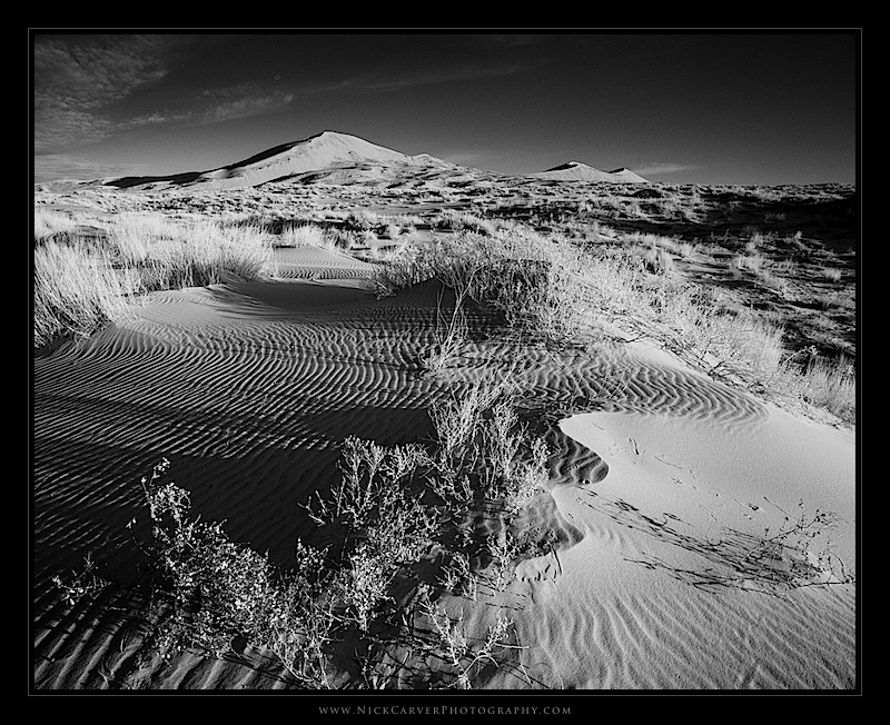 Black And White Landscape Photography Tutorial