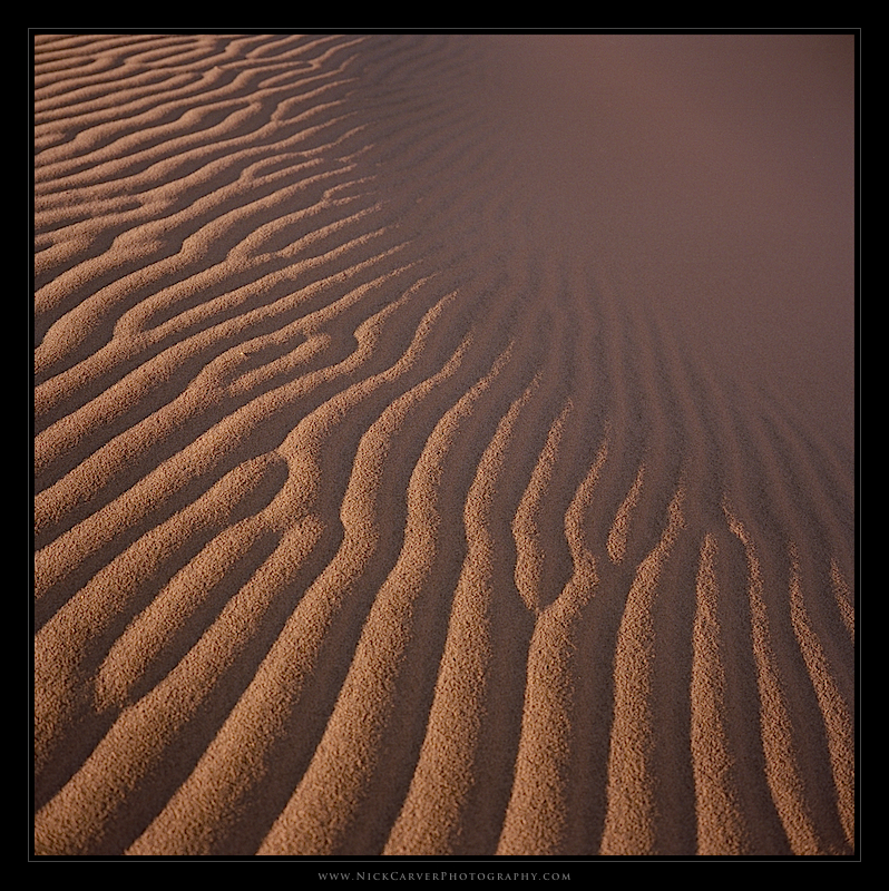 Kelso Sand Dunes Nick Carver Photography Photography