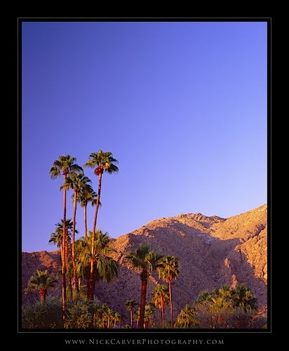 Sunrise in Palm Springs