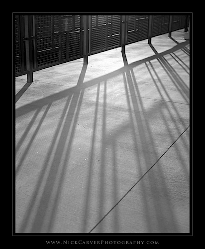Photo a Day Challenge: Day 8 - Late Light and Shadows on Ilford Delta 100 Film