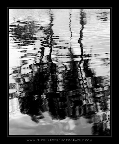Photo a Day Challenge: Day 18 - Tree Reflections on Ilford Delta 100 film