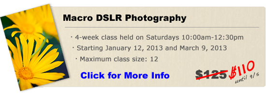 Macro DSLR Photography class in Orange County