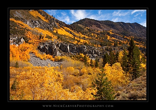 Fall color in the Eastern Sierra Nevada Mountains near Bishop, CA
