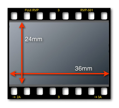 Do I Need a Full Frame Camera?